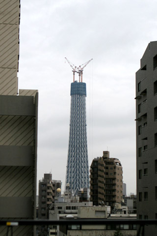 20100227_1.jpg